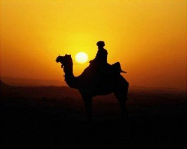 hijrah for better life